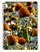 Echinacea Pow Wow Spiral Notebook