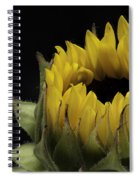 Empress Spiral Notebook