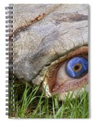 Eye Of A Dinosaur Lightning Spiral Notebook