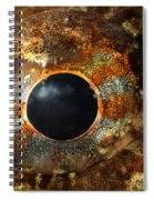 Eye Of Shorthorn Sculpin Spiral Notebook