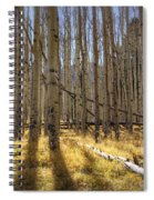 Fall On The Mountain  Spiral Notebook