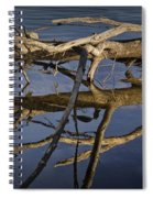 Fallen Tree Trunk With Reflections On The Muskegon River Spiral Notebook