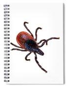 Female Blacklegged Tick Spiral Notebook