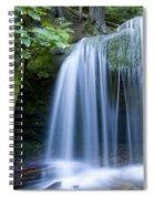 Fern Falls Spiral Notebook