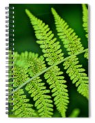Fern Seed Spiral Notebook