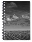 Field Furrows And Clouds In South East Texas Spiral Notebook
