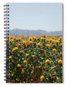 Fields Of Safflowers Spiral Notebook