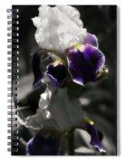Filoli Iris Spiral Notebook