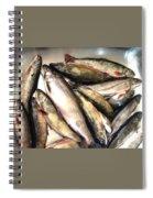 Fine Catch Of Trout Spiral Notebook