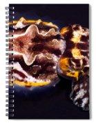 Flamboyant Cuttlefish Spiral Notebook