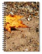Floating Autumn Leaf Spiral Notebook