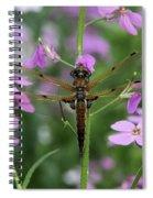 Four-spotted Skimmer Spiral Notebook