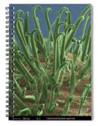 Galium Aparine, Sem Spiral Notebook