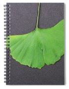 Ginkgo Leaf Spiral Notebook