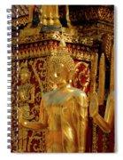Golden Buddhas Spiral Notebook