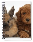 Goldendoodle Puppy And Rabbit Spiral Notebook