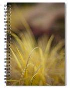 Grass Abstract 2 Spiral Notebook