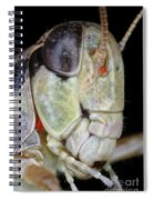 Grasshopper With Parasitic Mite Spiral Notebook