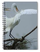 Great Egret Pair Spiral Notebook