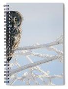 Great Grey Owl, Northern British Spiral Notebook