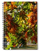 Green And Gold Spiral Notebook