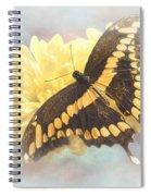 Grunge Giant Swallowtail Spiral Notebook