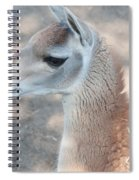 Guanaco Spiral Notebook
