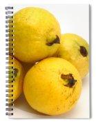 Guava Fruits Spiral Notebook