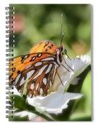 Gulf Fritillary Spiral Notebook