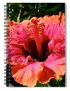 Hibiscus Blossom Spiral Notebook
