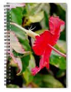 Hibiscus In Bloom Spiral Notebook