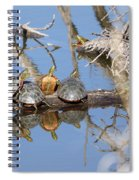 Hog Pile Spiral Notebook