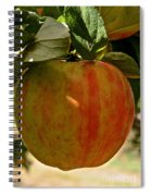Honey Crisp Spiral Notebook