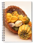 Horn Of Plenty Spiral Notebook