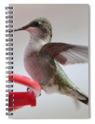 Hummingbird With Wings Back Spiral Notebook