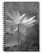 I Love Lotus Spiral Notebook