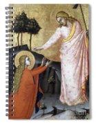 Jesus: Resurrection Spiral Notebook