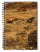 John Day Painted Hills Spiral Notebook