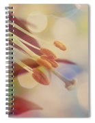 Joyfulness Spiral Notebook