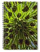 Kaboom Spiral Notebook