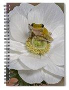 Kermit Spiral Notebook