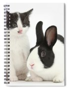 Kitten And Dutch Rabbit Spiral Notebook