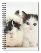 Kitten And Guinea Pig Spiral Notebook