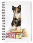 Kitten On Packages Spiral Notebook