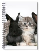 Kittens And Rabbits Spiral Notebook