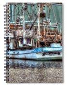 Lady De Ette Spiral Notebook