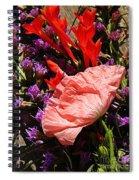 Latecomer  Spiral Notebook