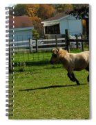 Lets Ride Spiral Notebook