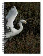 Lift Off Spiral Notebook