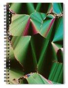 Liquid Crystalline Dna Spiral Notebook